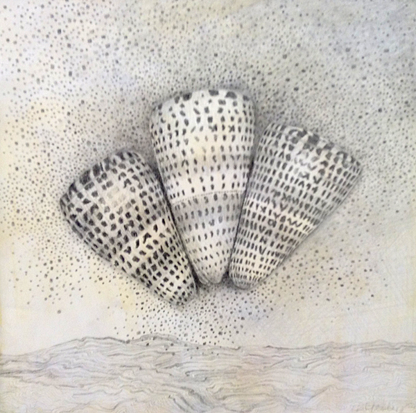 IRENE YESLEY: Three Shells